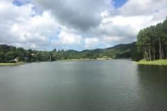 The San Juan lake in Las Terrazas