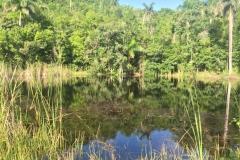 Small lake road to Soroa